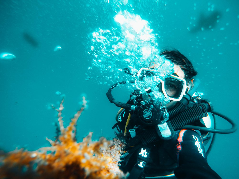 The best things to do in the Philippines: diver